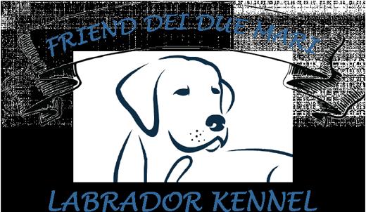 Labradordeiduemari