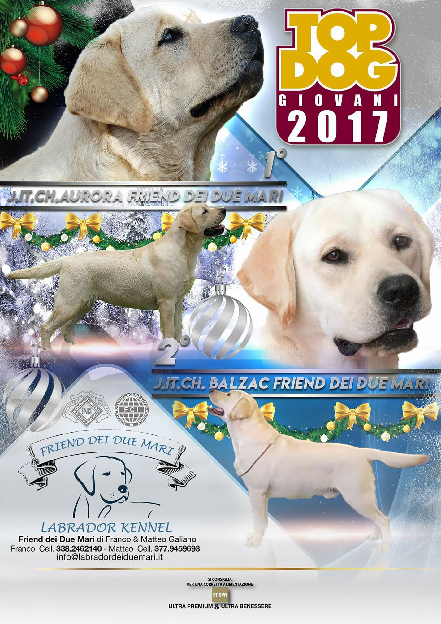 aurora-balzac-top-dog-2017